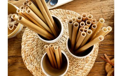 10 Reasons You Should Use Bamboo Drinking Straws
