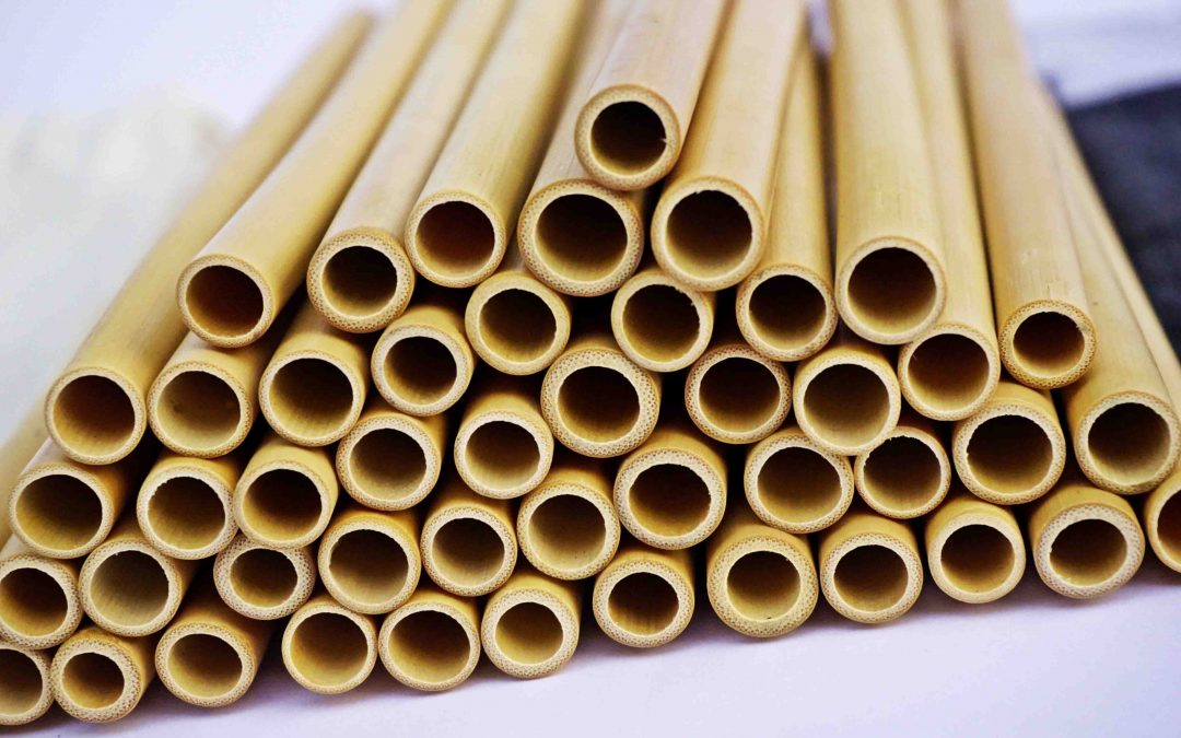 Best Reusable Straws: From Bamboo to the straw